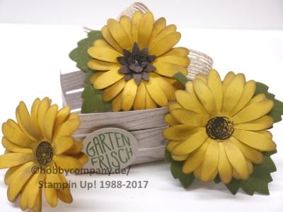 Sonnenblume mit Gänseblümchen Stanze