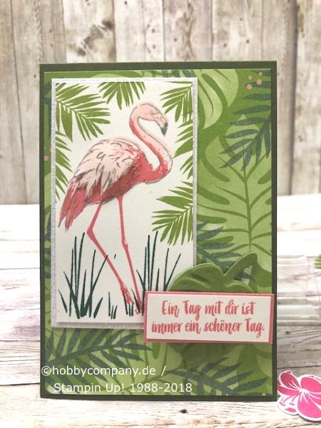 Flamingo und Tropenflair