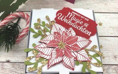 Verpackung weihnachtliche Pizzabox