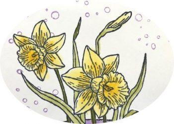 Grußkarte zum Frühling