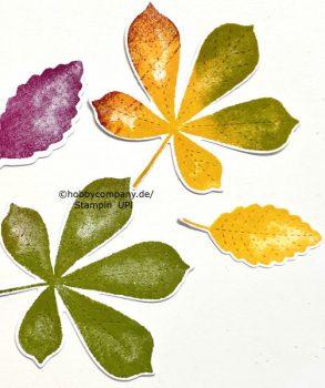 Gebutstagskarte im Herbst