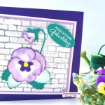 Geburtstagskarte gestalten mit Stiefmütterchen