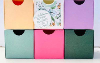 Ordnungsbox DIY in den 5 In Color Farben 2021
