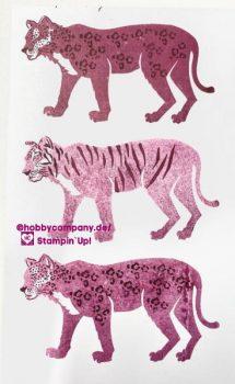 Großkatzen Produkte von Stampin`Up!