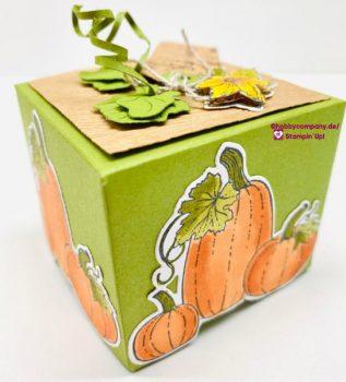 Basteltipp Herbstliche Box