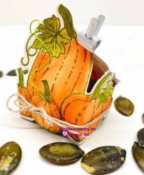 Basteltipp Herbstliche Box Pretty Pumpkins